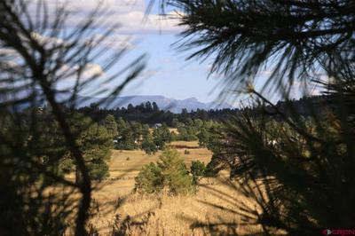 309 PROSPECT BLVD, Pagosa Springs, CO 81147 - Photo 1