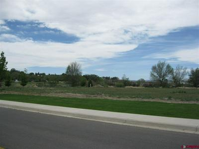 TBD VALLEY VIEW DR - LOT 3, Delta, CO 81416 - Photo 2