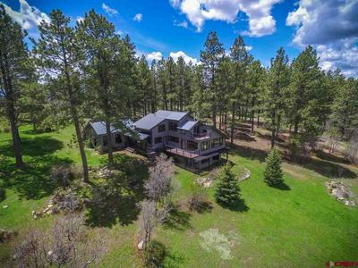 198 CLIFFSIDE PL, PAGOSA SPRINGS, CO 81147 - Photo 1