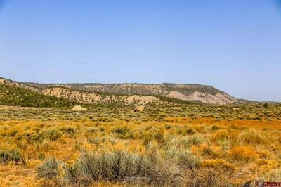TBD COUNTY ROAD 319, Ignacio, CO 81137 - Photo 2
