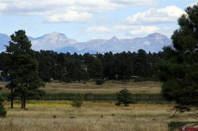 63 GREENWAY DR, Pagosa Springs, CO 81147 - Photo 2