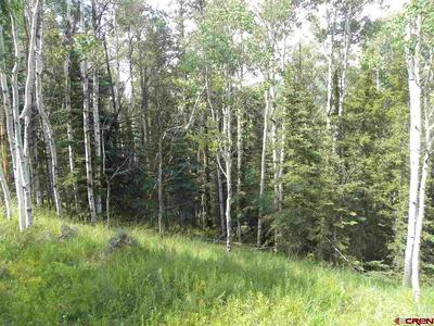 TBD CEMETERY ROAD, Pitkin, CO 81241 - Photo 1