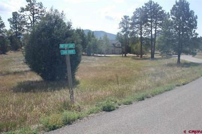 TBD MAYDAY LANE, Durango, CO 81301 - Photo 2