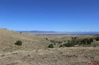 PARCEL 9 OAK CREEK ROAD, Eckert, CO 81418 - Photo 2