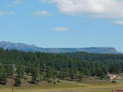 75 DANDELION DR, Pagosa Springs, CO 81147 - Photo 1