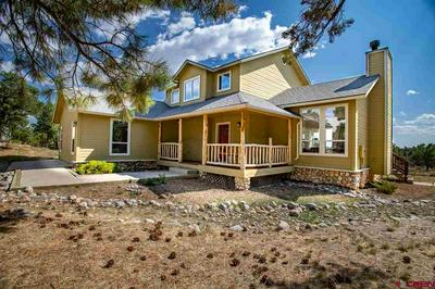 567 SQUAW APPLE RD, Durango, CO 81301 - Photo 1
