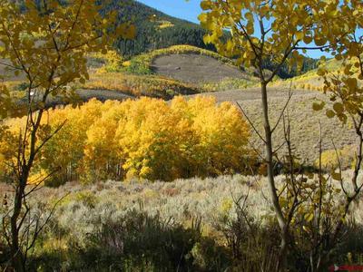 301 WILD ROSE LN, Almont, CO 81210 - Photo 1