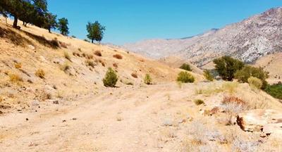 296 WALKER DR, Lake Isabella, CA 93238 - Photo 2