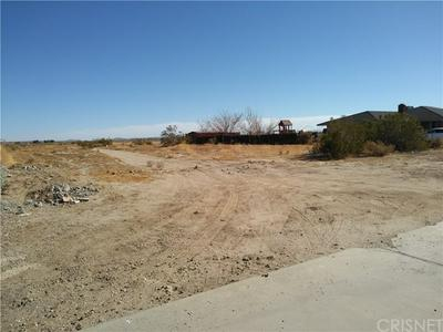 0 159TH ST EAST & INDIAN FALLS, Lake Los Angeles, CA 93535 - Photo 2