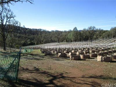 1000 CA-53, Clearlake, CA 95422 - Photo 2