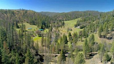 8692 BULL CREEK RD, Coulterville, CA 95311 - Photo 2