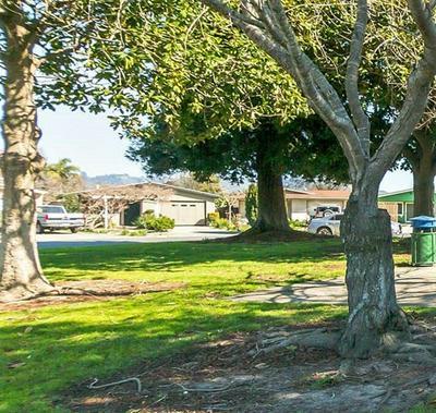 622 ESTER WAY, WATSONVILLE, CA 95076 - Photo 1