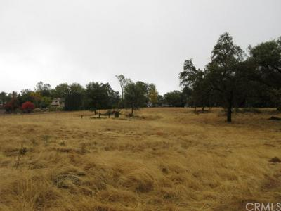 0 CHEROKEE ROAD, Oroville, CA 95965 - Photo 2