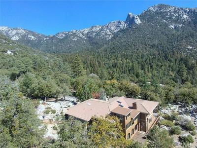 55001 FOREST HAVEN DR, Idyllwild, CA 92549 - Photo 2