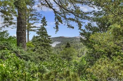 649 VIRGINIA CT, Lake Arrowhead, CA 92352 - Photo 2