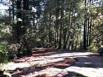 333 WESTERN AVE, Outside Area (Inside Ca), CA 95007 - Photo 2