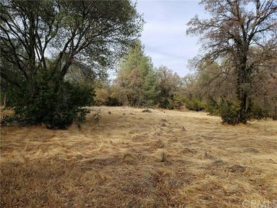 0 GRIMONT ROAD, Oroville, CA 95966 - Photo 2