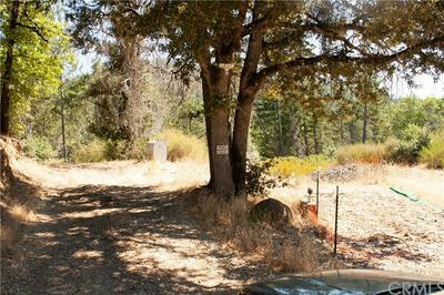 13341 PRATHER WAY, Cobb, CA 95426 - Photo 2