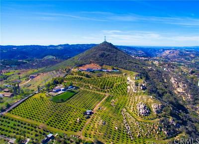 29555 SIERRA ROJO LN, Valley Center, CA 92082 - Photo 2