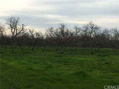 0 LARKIN, Biggs, CA 95917 - Photo 1