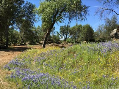 4405 LONE STAR CIR, Mariposa, CA 95338 - Photo 2