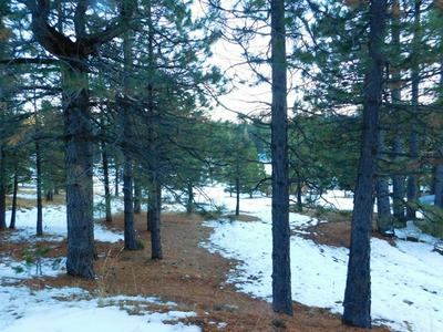 0 HAMPTON AVENUE, Mineral, CA 96063 - Photo 1