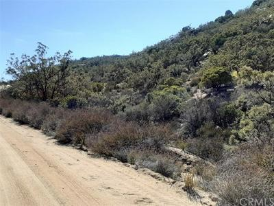 1000 CRAZY HORSE CANYON ROAD, Aguanga, CA 92536 - Photo 2