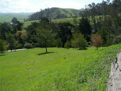 0 LINDEN COURT, Cambria, CA 93428 - Photo 2