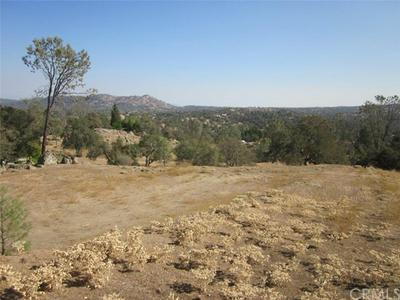 0 CRYSTAL SPRINGS COURT, Coarsegold, CA 93614 - Photo 2