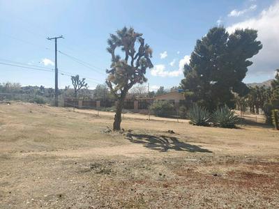 55463 NAVAJO TRL, Yucca Valley, CA 92284 - Photo 2