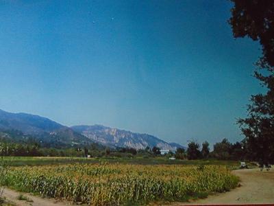 18055 E HALLOCK DRIVE, Santa Paula, CA 93060 - Photo 1