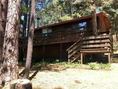 52445 PINE RIDGE RD, Pine Cove, CA 92549 - Photo 2