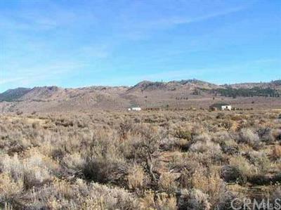 74 DAILEY CT, Chilcoot, CA 96105 - Photo 2