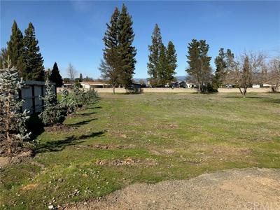 20 QUEEN ANN WAY, LAKEPORT, CA 95453 - Photo 1