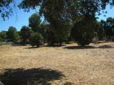 CACTI, Campo, CA 91906 - Photo 1