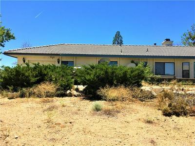 1074 TAMARACK RD, Pinon Hills, CA 92372 - Photo 1