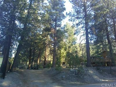 0 ORCHARD, Wrightwood, CA 92397 - Photo 1