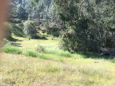 27743 SKY HARBOUR RD, Friant, CA 93626 - Photo 2