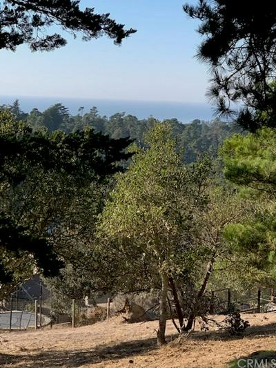 0 RICHARD AVENUE, Cambria, CA 93428 - Photo 2