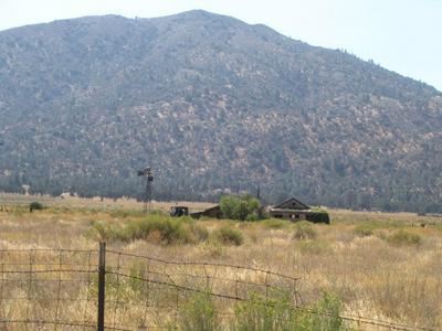 21000 WILLIAMS RD, Caliente, CA 93518 - Photo 2