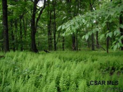 LOT #2 REAM ROAD # 2, Rockwood, PA 15557 - Photo 1