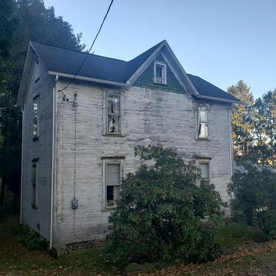 113REAR PALLISER ST, Johnstown, PA 15905 - Photo 1