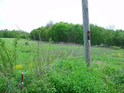 315 MUNSTER RD, Portage, PA 15946 - Photo 2