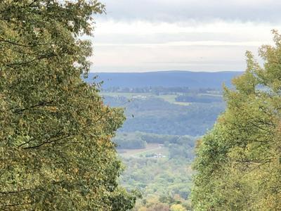 51 WOODCREST DR, Northumberland, PA 17857 - Photo 2