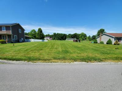 254 HAHN ST, Beavertown, PA 17813 - Photo 2