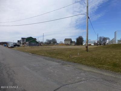 374 PINE ST, Turbotville, PA 17772 - Photo 2