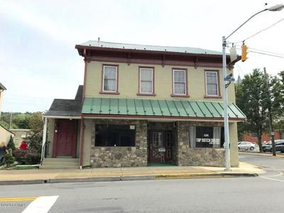 371 CHESTNUT ST, Mifflinburg, PA 17844 - Photo 1