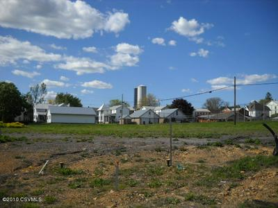 342 PINE ST, Turbotville, PA 17772 - Photo 1