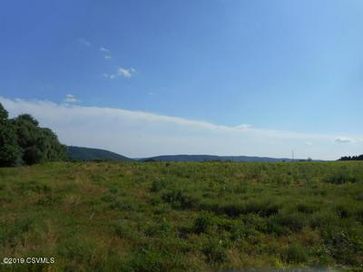 LOT 5 STATE ROUTE 93 HIGHWAY, Nescopeck, PA 18635 - Photo 1