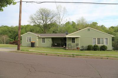 442 CHAMBER ST, Danville, PA 17821 - Photo 2
